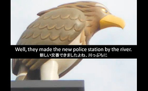 lp-ShibagakiMustSeeSpot00.jpg