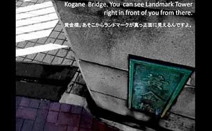 lp-ShibagakiSpecial00.jpg
